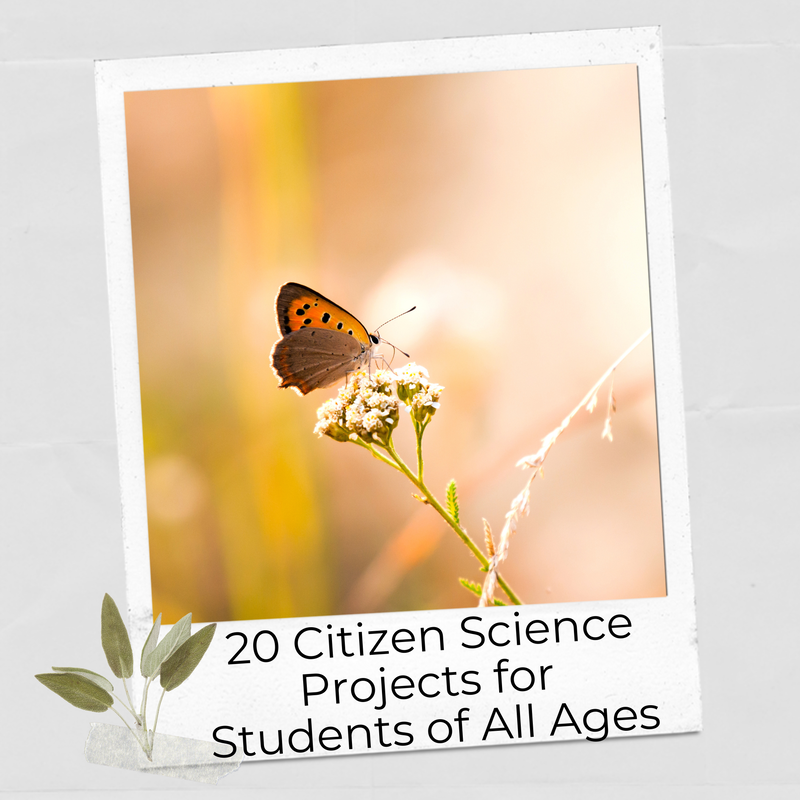 Citizen science project-based learning for students of all ages.