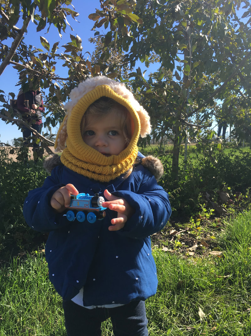 A photo created by Experiential Learning Depot of a little girl standing in front of an apple tree at an apple orchard holding a Thomas the Train toy.