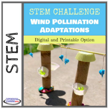 STEM challenge about wind pollinator adaptations.